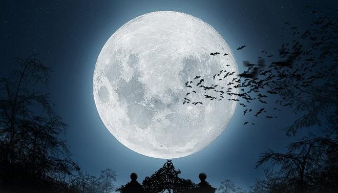 PARIS-super-lune-14-novembre-2016-Auberge-de-Jeunesse-BVJ-OPERA-MONTMARTRE