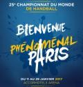 CHAMPIONNAT DU MONDE DE HANDALL a PARIS