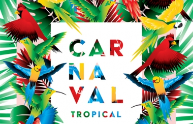 logement-Carnaval-tropical-de-Paris