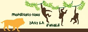 PARIS JUNGLE TOUR